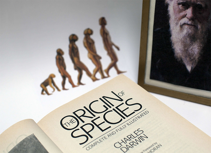 La thérapie génique au secours de la sélection darwinienne