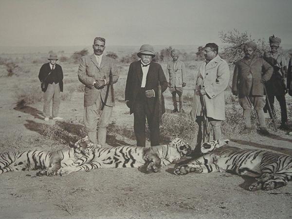 Clemenceau : le tigre et l'Asie