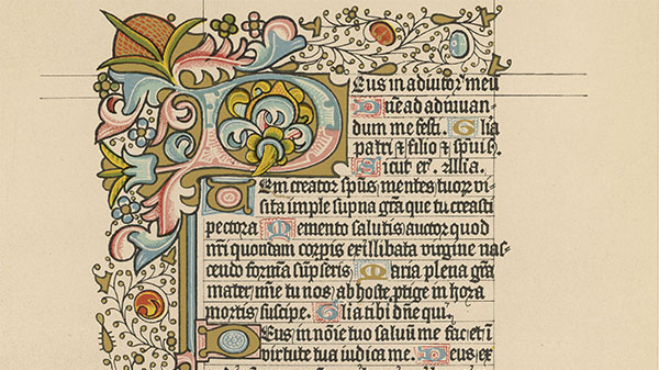 A quoi sert le latin ?
