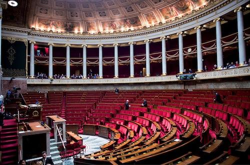 Réformes institutionnelles la proportionnelle, la Corse, le climat… et un raton-laveur ?