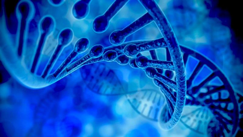 Le projet de loi Bioéthique: une horreur peut en cacher une autre