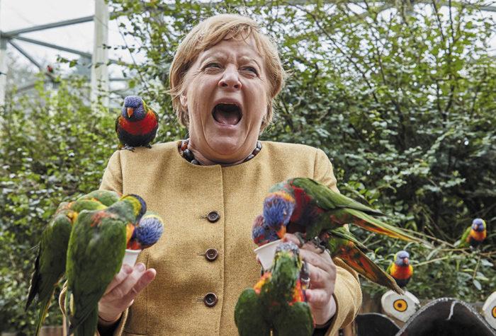 On venait d'annoncer à Angela qu'Emmanuel était en ligne. sa réaction figea l'assistance et Süßlichotte, son loriquet préféré, s'oublia sur son épaule.
